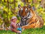 Адам про Януковича-тигра