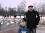 """Природоохоронці оголосили акцію """"Збережемо лебедів на Буковині"""""""