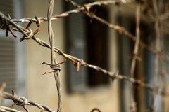 В Чернівецькому СІЗО вдвічі зменшилась кількість утриманих
