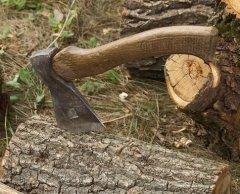 На Проспекті в Чернівцях рубають дерева