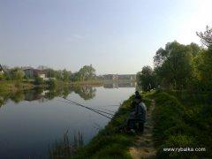 На Буковині і на орендованому ставі буде можливість рибалити
