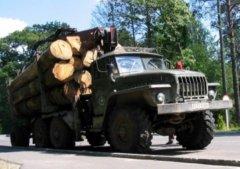 """Прозріння Папієва: """"Я абсолютно незадоволений ситуацією у лісовій галузі краю"""""""