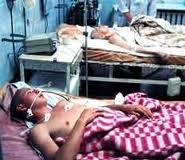 У Чернівцях зареєстровано 25 випадків сальмонельозу