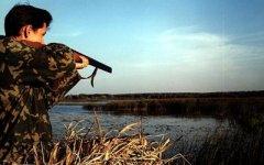 На території Буковини триває сезон полювання на пернату, та парнокопитну дичину