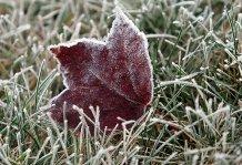 Синоптики сніг прогнозують на 4 грудня
