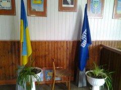Прапор партії регіонів прирівняли до державних символів?