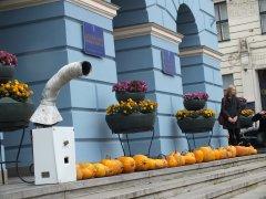 Під стінами Чернівецької міської ради пікет ОНОВЛЕНО