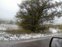 В Карпатах буде сніг і сильний вітер