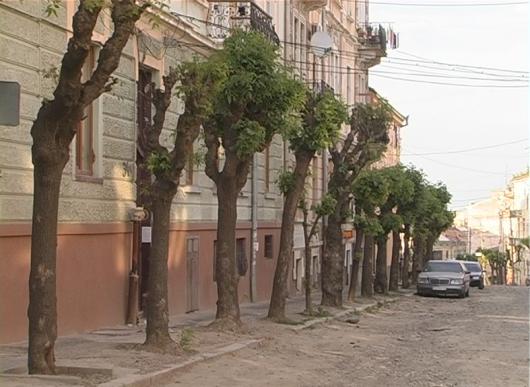 У центрі Чернівців – пам'ятник безгосподарності