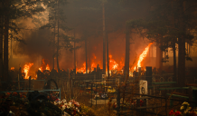 Природа бунтує проти Росії: пожежі, велика вода та нашестя саранчі