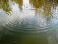 У Новоселицькому районі втопився чоловік