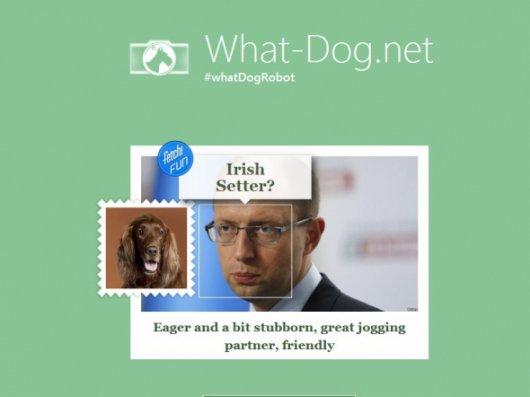На яких собак схожі українські політики (за визначенням робота Microsoft)