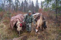 Контрабандні цигарки везли до Румунії на конях