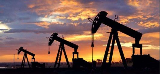 Використання енергетичних матеріалів та продуктів перероблення нафти підприємствами області