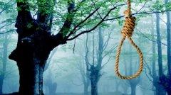 На Буковині вагітна жінка, яка хотіла вбити свою маму, вчинила самогубство