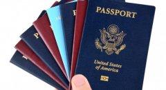 Президент вніс в Раду законопроект про позбавлення українського громадянства осіб з подвійним громадянством