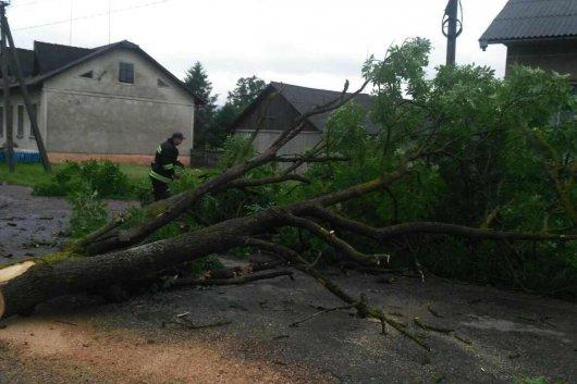 Чернівецька область: рятувальники ліквідували наслідки негоди
