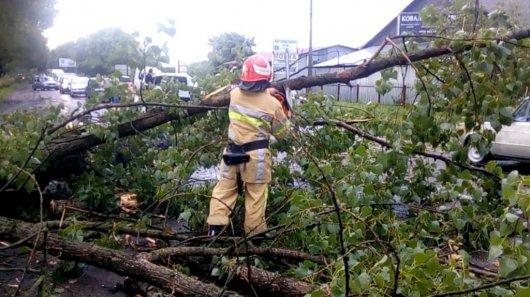 Негода залишила без електрики 181 населений пункт Чернівецької області