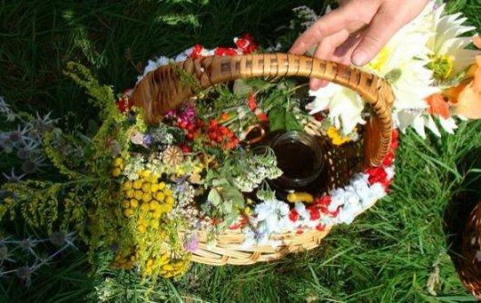 Маковія, або Медовий Спас: традиції та прикмети
