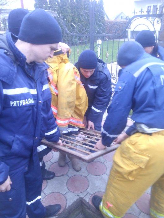 У Чернівцях рятувальникам довелось розпилити металеву решітку, щоб витягнути дівчинку