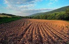 На Буковині з незаконного користування повернуто 2652 га землі